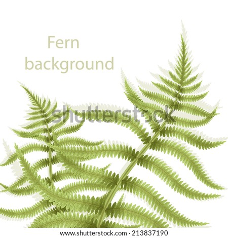 Eco background with fern. Card with green leafs - stock vector