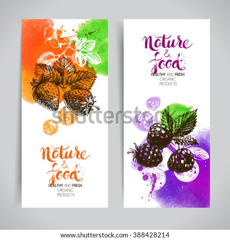 Eco food banners set. Watercolor and hand drawn sketch berries. Farmers market backgrounds. Vector illustration - stock vector