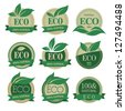 Eco labels with retro vintage vector design. - stock vector