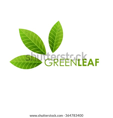 Ecology logo sign , green leaf design, growth leaves vector illustration.