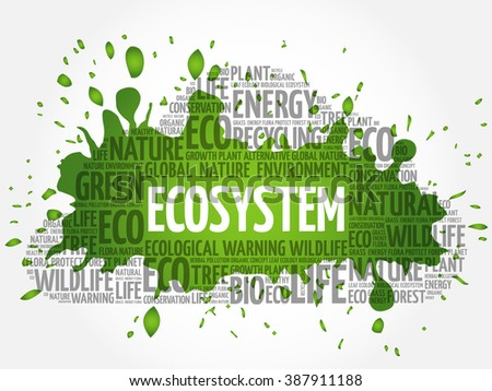 Ecosystem word cloud, conceptual green ecology background - stock vector