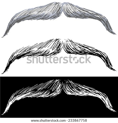 Editable vector illustrations in variations. Moustache