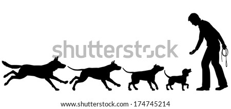 Editable vector silhouettes illustrating the domestication of dog from wolf