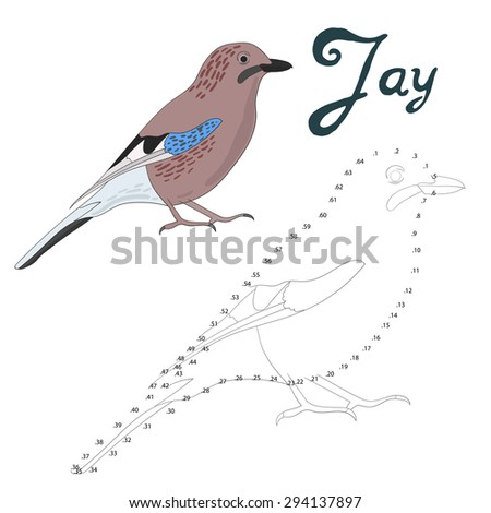 educational game connect the dots to draw jay bird vector illustration