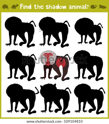 cartoon baboon stock images royalty free images vectors shutterstock. Black Bedroom Furniture Sets. Home Design Ideas