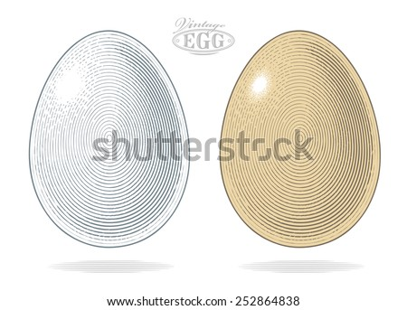 Egg in vintage engraved style.   Vector illustration, isolated, grouped, transparent background  - stock vector