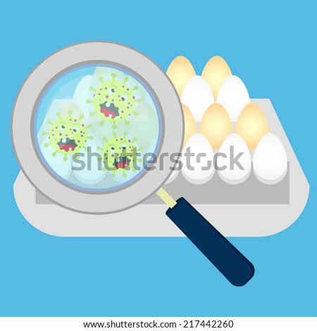 Eggs with salmonella. Magnifying glass showing germs on eggs - stock vector