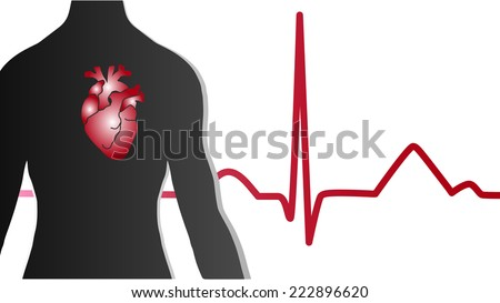 EKG heart body vector - stock vector