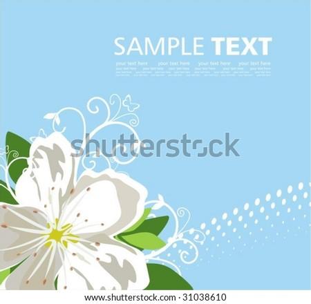 Elegant background with jasmine - stock vector
