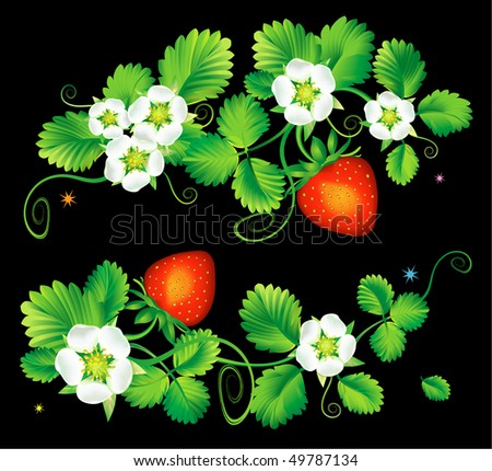 Element decorative for design, strawberry - stock vector