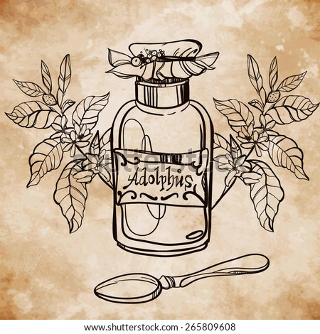 Element for pharmacy and herbal medicine. Herbal Medical Concept and drawn medical herbs and spices.Vintage style doodle on aged card paper background. Vector Illustration.
