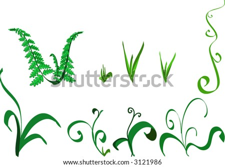 elements of sprout, grass and fern