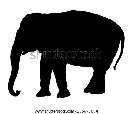 Elephant black vector silhouette isolated on white background. - stock vector