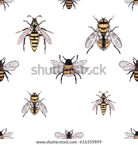 Embroidery Yellow Fly Honey Bee Dangerous Stock Vector Royalty Free