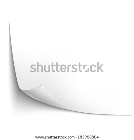Empty paper sheet curled corners  - stock vector
