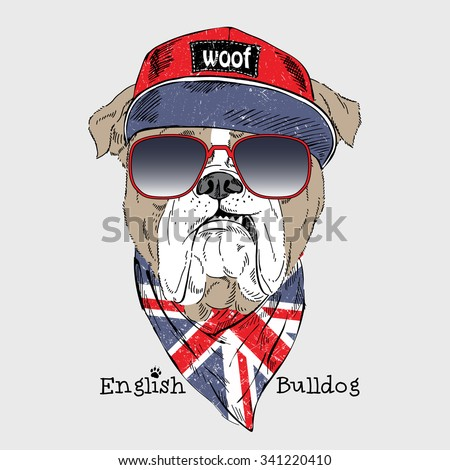 English bulldog dressed up in t-shirt with English flag, fashion animal  illustration - stock vector
