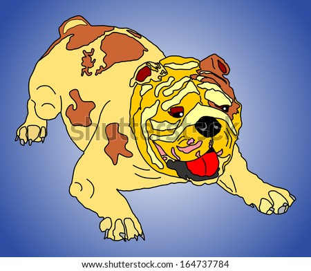 English Bulldog vector isolated on blue background. Cartoon illustration of purebred dog portrait.