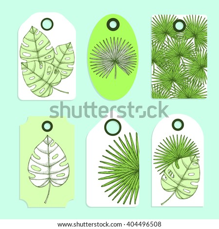 Engraved palm leaves set of tags in vintage style, vector - stock vector