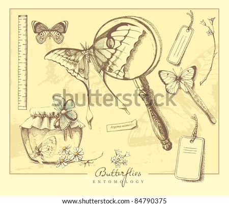 Entomological hand drawn set: highly detailed hand drawn scientific  tools and butterflies. - stock vector