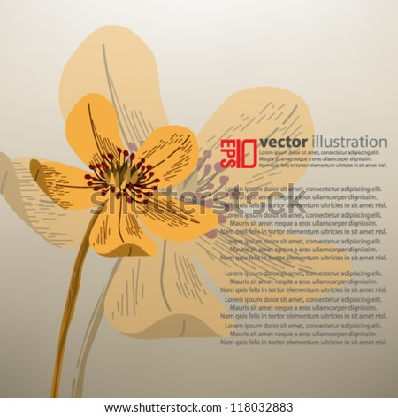 eps10 abstract vector design - retro flower concept