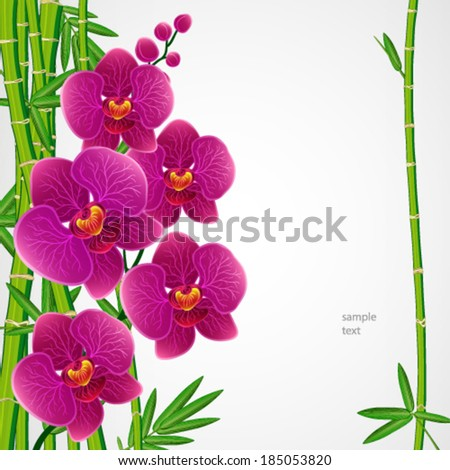 Eps10 Floral design background. Bamboo and orchids. - stock vector