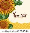 Eps10 vector sunflower background - stock vector