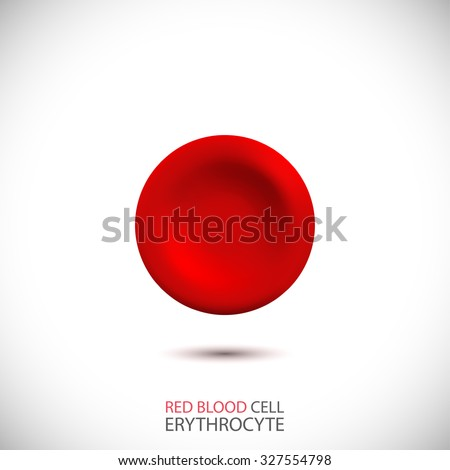 Erythrocyte. Red blood cell. Vector Illustration  - stock vector