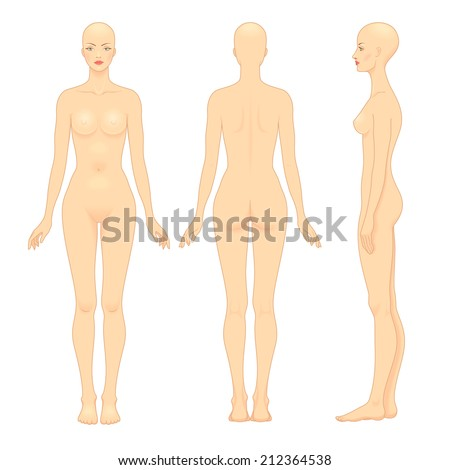 European woman's body template. Front, back and profile. - stock vector