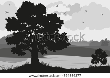 Evening Forest Landscape, Oak Trees, Bushes and Grass on the River Bank and Birds in the Cloudy Sky, Black and Grey Silhouettes on White Background. Vector