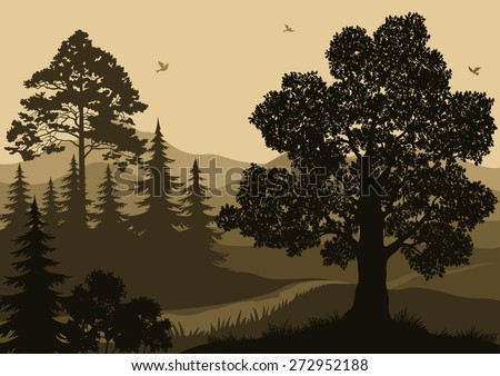 Evening Forest Landscape, Trees, Mountain and Birds Silhouettes. Vector