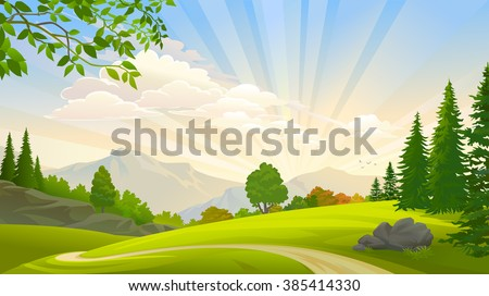 Evergreen forest and green grasslands around a lonely path - stock vector
