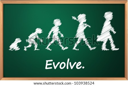 Evolution on a detailed blackboard - stock vector