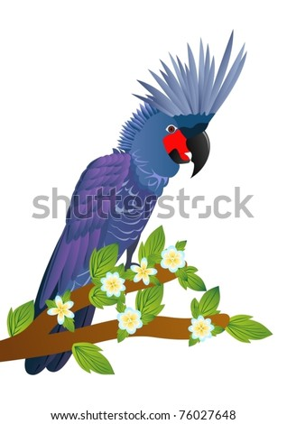 Exotic birds. A parrot sits on a tree branch with a blossoming flower. - stock vector