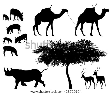 exotic trees and animals, vector set - stock vector