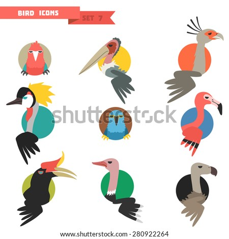 Exotic tropical bird set with flat design. Parrots and flamingo with ostrich. Vector illustration - stock vector