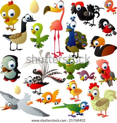 extra big set of birds - stock vector
