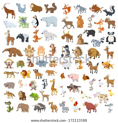 Extra big vector animals and birds set - stock vector