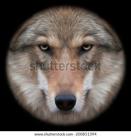 Eye contact with a severe wolf female through the lens. Menacing expression of the european wolf, very beautiful animal and extremely dangerous beast. Amazing vector image in oil painting style. - stock vector