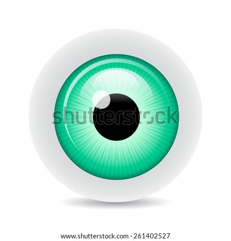 Eye on white background with shadow  vector illustration