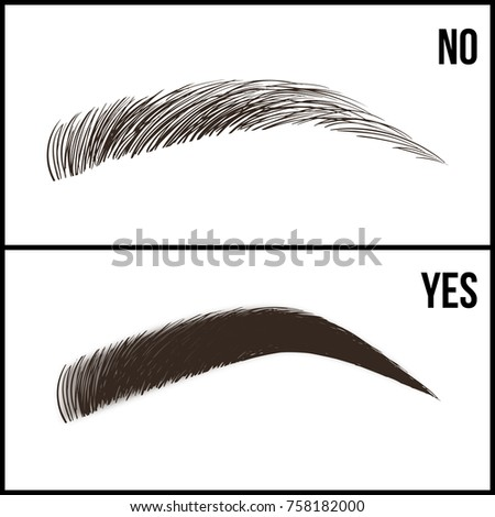 Eyebrows Design Set Wellgroomed Shaggy Eyebrows Stock Photo (Photo ...