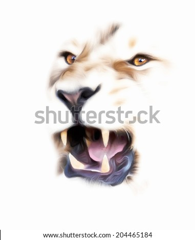 Eyes and jaws of an Asian lion, isolated on white background. King of beasts, the biggest cat, shows his huge fangs. The most dangerous predator with open chaps. Amazing vector image. - stock vector