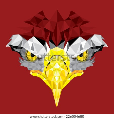 Eyes of Eagle with geometric pattern vector - stock vector