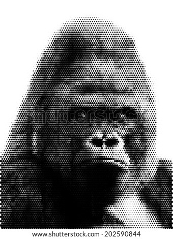 Face portrait of a gorilla male, severe silverback. Menacing side look of the great ape, the most dangerous and biggest monkey. Amazing dotted vector image, made of big dots. - stock vector