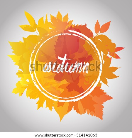 fall leafes autumn background warm color vector