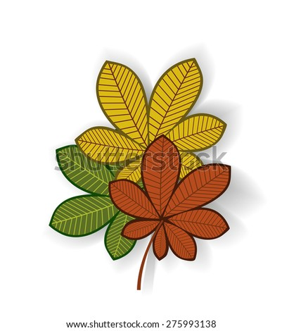 Fall Leaves  - stock vector