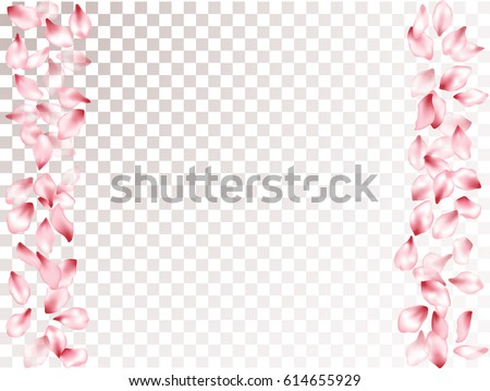 Falling Pink Flower Petal Confetti Vector Floral Isolated Pattern On Transparency White And Grey Grid