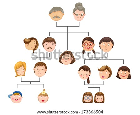 Family tree - stock vector