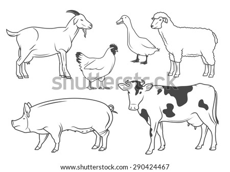 one line drawing of a rabbit farm animals - Free Line Drawings Of Animals