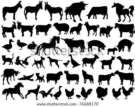 Farm animals - stock vector