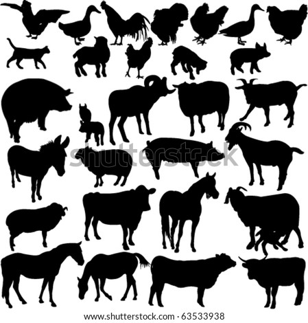 farm animals collection 2 - vector - stock vector